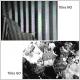 Structures en domaines visualisées par effet Kerr magnéto-optique
