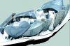 La fondation Louis Vuitton - architecte Frank Gehry