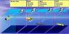 Comparatifs des différents engins sous-marins