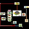 Schématisation des circuits de la méthanisation (digesteur = méthaniseur)