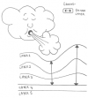 Effet du vent sur l'océan - Effect of the wind on the ocean