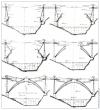 Les étapes de la construction du viaduc de Garabit (travail réalisé pour le musée des Arts et Métiers)