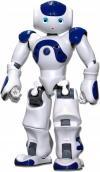 NAO, un robot bien chevillé